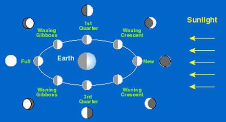A diagram shows the different cycles of the Moon, with the location of the Sun and the Earth indicated: first quarter, waxing crescent, new, waning crescent, third quarter, waning gibbous, full.