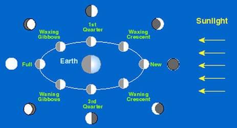 Lunar Phases Diagram Images & Pictures - Findpik