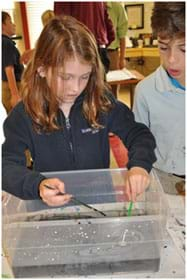A photograph shows a girl holding a paintbrush in each hand while creating a beautiful ink on water image in in a plastic tub with a shallow amount of water. Another student looks over her shoulder with an absorbed look.