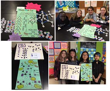 Four photographs show students demonstrating examples of their work using molecular model sets as well as posters for which they created infographics that describe how to model the reactions.