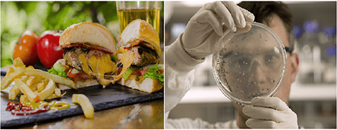 (left) A burger and fries (right) A scientist examining bacteria on a petri dish.