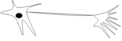 A line drawing shows a loose five-pointed object with a round dark dot in its center with two strings from it to multi-pointed object.