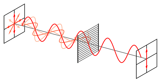 A line diagram shows two screens and a wire-grid polarizing filter. On the first screen, on the left, many orientations of light are shown, traveling in a sinusoidal path towards a filter. After the filter, only a vertical polarization of light remains to travel on towards the second screen.