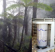A photograph shows a foggy jungle with lush ferns and greenery. A smaller inset photo shows a spinning roller device with two pens that continuously records relative humidity measurements in the field.