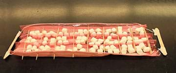A photograph shows a hemoglobin protein model made by a student team. It looks like a tray made from paper, pink saran wrap, string, tape, wooden craft sticks and wooden cocktail sticks with three rows of eight square low-walled compartments (for a total of 28 compartments) that each hold four mini marshmallows. Two craft sticks at each end of the tray serve as handles.