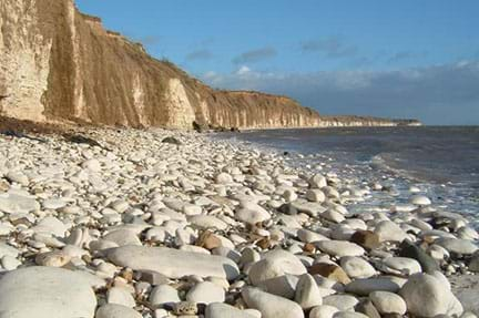 "A photograph shows a curving shoreline with white cliffs and a ""beach"" composed of large white rounded rocks; this is Chalk Pebble Beach in England."