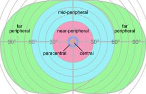 A line drawing shows concentric circles (widening to ovals) from a center point with inner, mid and outer areas labeled central, paracentral, near-peripheral, mid-peripheral and far peripheral, and markings indicating zero to 90-degrees from either side of the center point.