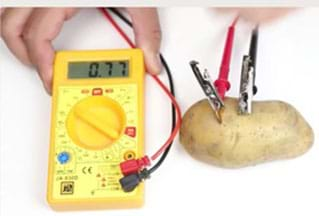 A photograph showing an exemplary potato battery.
