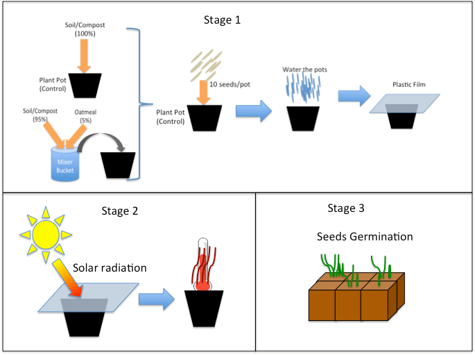 Three graphics depict the three activity stages. During session 1, students prepare the soil (control and treatment versions), put it in the pots, add seeds and water, and cover the pots with plastic wrap. In session, 2, students remove the plastic, smell the degradation products and measure the pot temperatures. During session 3, students count the plants in each pot and determine how many seedlings (weeds) died.