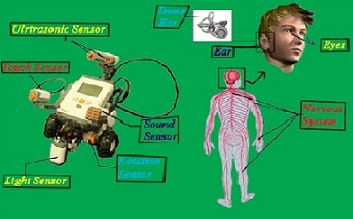 Composite picture of LEGO NXT robot with electronic sensors and a drawing of the human nervous system.