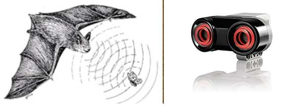 Two images: A diagram shows a bat using its sonar to locate prey. The bat sends out sound waves and the returning waves provide it with information about the location of a moth. A photograph shows a palm-sized gray and white plastic device with a metal screens inside two orange-rimmed porthole openings (a LEGO ultrasound sensor).