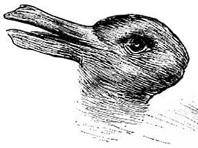 A black and white drawing that looks like a duck until your eyes switch perspective and see a rabbit, or vice versa.