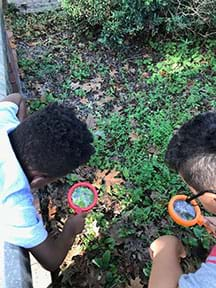 Two male students practice using magnifying glasses in an outdoor environment. They are looking through the magnifying glasses at a grassy area.