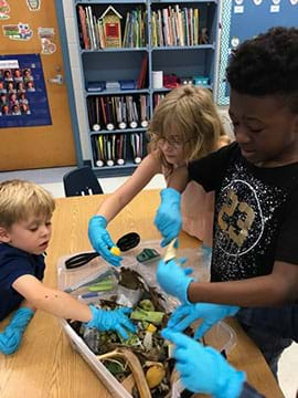 Image of three students working together as they add food waste (banana peels, broccoli stems, and old fruit) into a compost bin. The compost bin includes leaves, dirt, and twigs.
