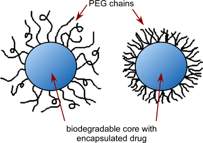 A line drawing shows two blue circles (representing a biodegradable drug substance), each surrounded with black lines (representing encapsulation by attached biodegradable PEG polymer chains) sticking out from the circle edges. One blue circle s loosely covered with curly lines and the other is densely covered with shorter lines, representing different types of encapsulation.