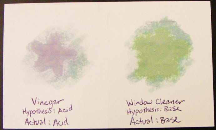 On an index card, two hand-drawn star images. Under one star: vinegar, hypothesis: acid, actual: acid. Under the other star: window cleaner, hypothesis: base, actual: base.