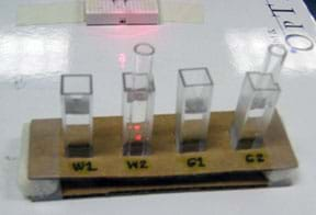 Photo shows four glass vials in holes cut in a rack made of cardboard. Vials labeled W1, W2, G1, G2.