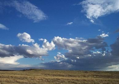 A landscape view of yellow-green grassy plains with a blue partly cloudy sky above the land. There is virtually no observable rise in the land surface.
