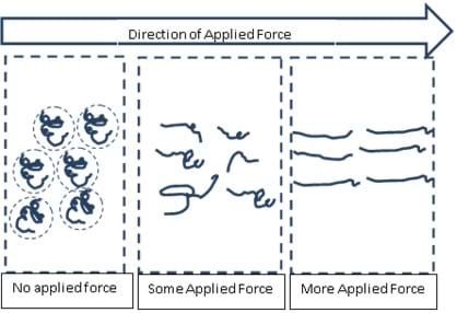 A line drawing shows a polymer reaction when force is applied. With no applied force, the polymers look relaxed and curly. With the increasing application of force, they stretch out and look more stringy.