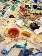A photograph shows a wide assortment of marine debris much of it plastic parts, components and broken pieces including lids, netting and bottles.