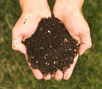 A photograph of two hands cupped together and holding a small pile of dark, soil-like compost material.