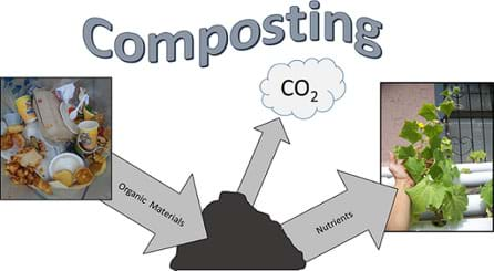 A diagram shows organic waste material (mainly food waste) being added to a compost pile from which it releases carbon dioxide and nutrients, the raw materials for plant growth.