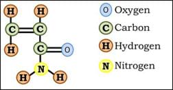 A stick diagram shows one oxygen, one nitrogen and five hydrogen atoms attached to three carbon atoms.
