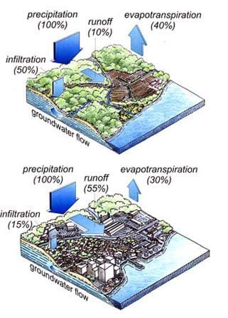 Natural and urban stormwater water cycles lesson teachengineering two similar diagrams show the natural and human developed water cycles both show precipitation ccuart Choice Image