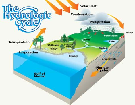 A cube-shaped cutaway diagram shows the hydrologic (water) cycle, including solar heat, condensation, precipitation, recharge, percolation, groundwater replenishment (Floridan aquifer), evaporation and transpiration processes happening between the atmosphere, land, ocean (Gulf of Mexico).