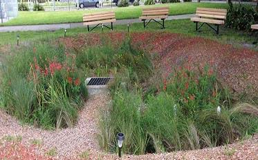 A landscape photograph shows a sunken circular area in a park with a drain in the middle, planted with grasses and flowers, and surrounded by mulch and four benches.