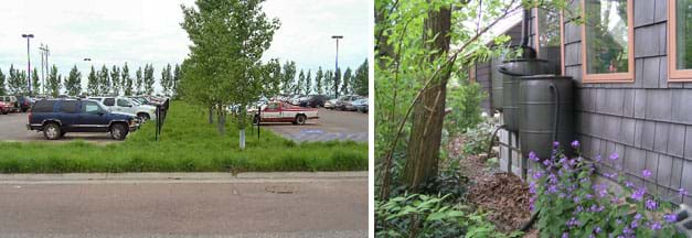 Two photographs: Between two rows of parked cars are lush grasses and trees, with a ring of trees visible at the farther end of the parking lot. Two plastic 50-gallon barrels are shown next to the side of a house with a pipe from the gutter above going into one of the barrels.