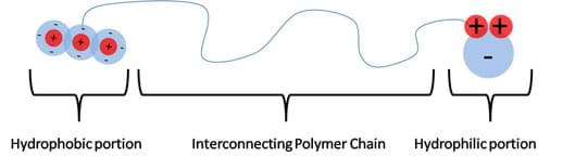 Line drawing shows a long curvy line (an interconnecting polymer chain) with a CO2 molecule at its left end (hydrophobic portion) and a H2O molecule at its right end (hydrophilic portion).
