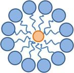 Cartoon illustration shows a ring of 12 blue circles with crooked tails all pointing toward and surrounding one orange circle.