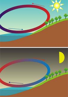 Two-part side-view diagram shows daytime and nighttime landscape scenarios of land next to water. During the sunny daytime, a circular arrow diagram shows cool (blue) air moving towards the land to take the place of rising warm (red) air, which then moves toward the water. The nighttime circular diagram is reversed, with cooler air from land moving towards the water to take the place of warm (red) air rising from the water, and then heading towards land.