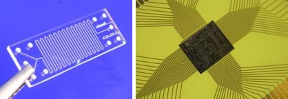 Two images: Photo shows a pair of silver tweezers holding a rectangular piece of clear glass with etched lines and 10 holes—a glass microreactor made by Micronit Microfluidics. Second image looks like a multi-shaded wide cross shape with protruding roughly parallel lines and a center rectangle engraved with fine straight and curved lines—a microelectromechanical systems chip.
