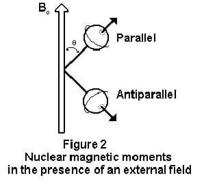 Figure 2: Nuclear magnetic moments in the presence of an external field. In the diagram, a large magnetic field vector points upwards with two vector lines coming out of its side. The vector lines travel through two spheres, and the top one is labeled parallel and the bottom one is labeled antiparallel.