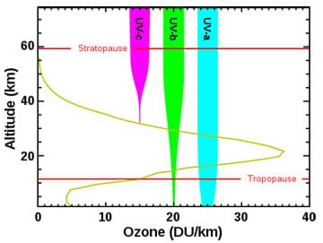 A graph of ozone (DU/km) vs. altitude (km) shows the levels of ozone at varying altitudes and the amount in which the ozone levels are able to block the three types of ultraviolet radiation: UVA, UVB and UVC.
