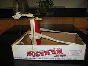 Photo shows a device made of tape, cups, plastic forks and a mouse trap in a box top.