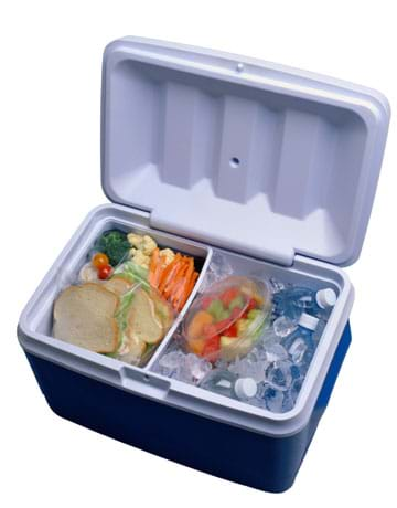 Photo looking into an open plastic cooler filled with ice, beverages, sandwiches, fruits and vegetables.
