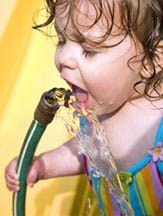 Photograph shows a toddler drinking from a garden hose.