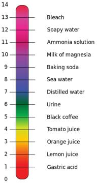 Diagram shows a 0 to 14 scale listing gastric acid, lemon juice, orange juice, tomato juice, black coffee, urine, distilled water, sea water, baking soda, milk of magnesia, ammonia solution, soapy water, bleach.